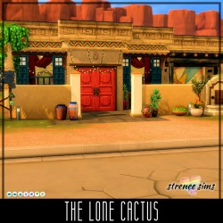 The Lone Cactus
