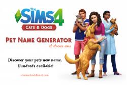 Pet Name Generator | Have fun generating pet names | strenee.huddlenet.com